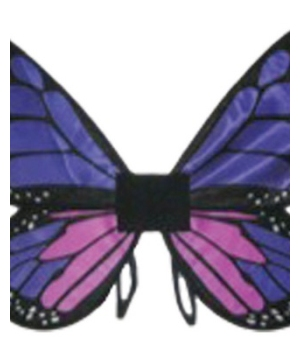 Kids Satin Butterfly Wings