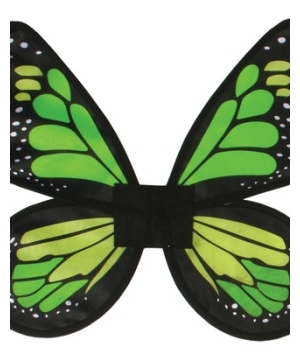 Wings Butterfly Satin